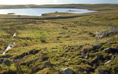 paysage d'aubrac