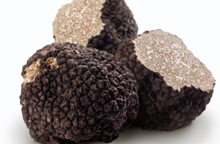 La truffe noire