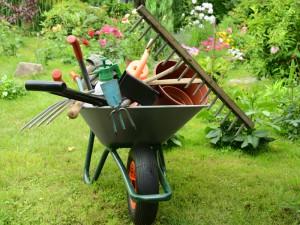 brouette dans un jardin pleine d'équipement