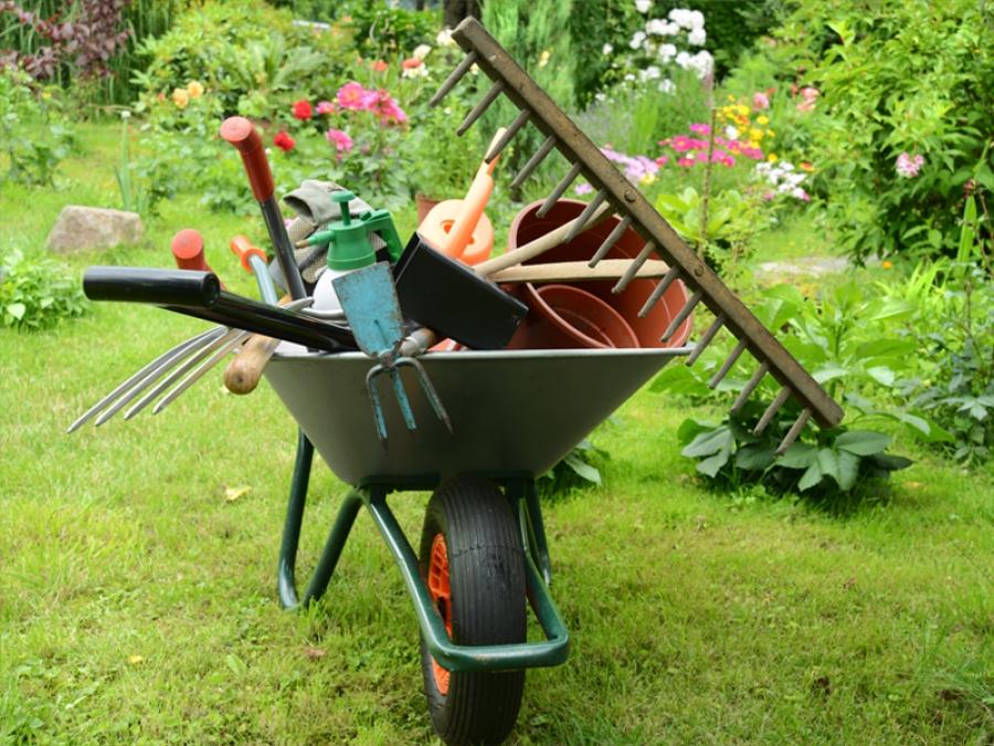 jardin-été